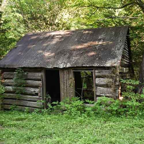 Rustic building in the woods.